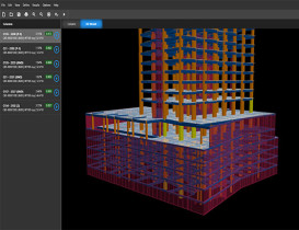 Software Development for Shear Wall and Column Design